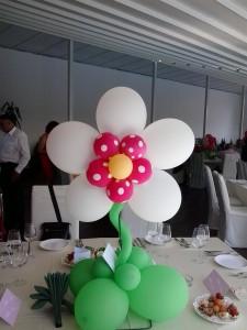 Floare 5 petale