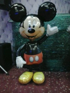 Mickey folie