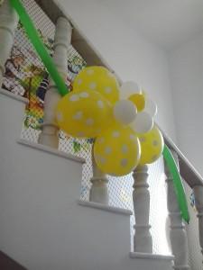 floare baloane